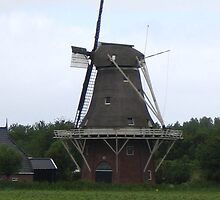 Proud to be Dutch by Patje