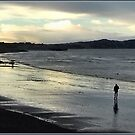 Low tide at dusk by dOlier