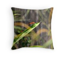 View to a Dragon Throw Pillow