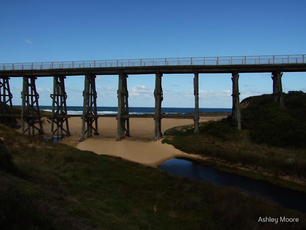Bridge by Ashley Moore