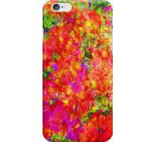 Potpourri iPhone Case/Skin