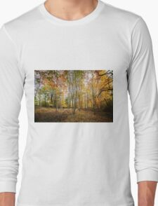 Autumnal Wood Long Sleeve T-Shirt