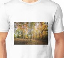 Autumnal Wood Unisex T-Shirt