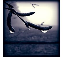 Natural Depression II Photographic Print
