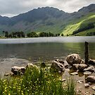 Haystacks - Buttermere by David Lewins