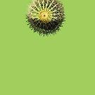 Golden Cactus by DAdeSimone
