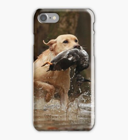 Ace retrieving a duck iPhone Case/Skin