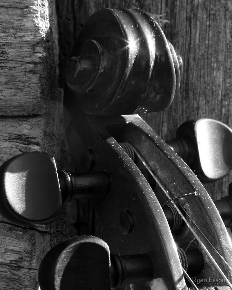 Violins Series 3 by Ryan Esson