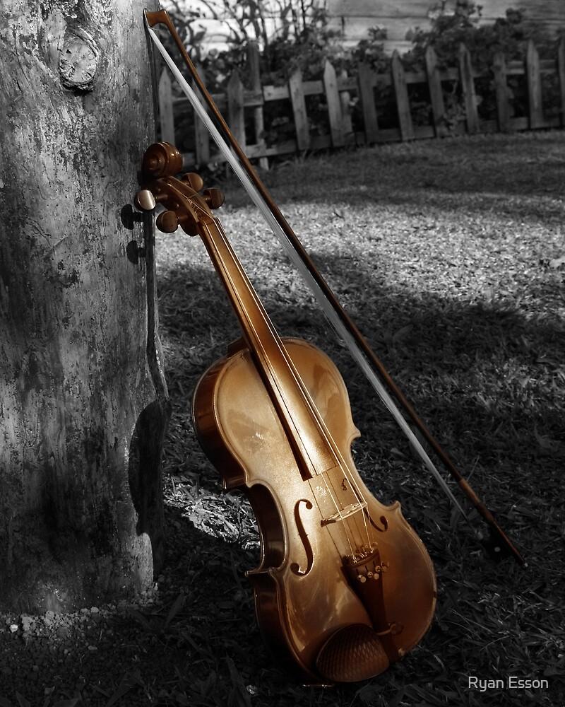 Violin Series 5 by Ryan Esson