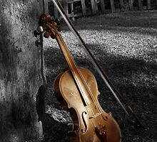 Violin Series 5 by Ryan Esson