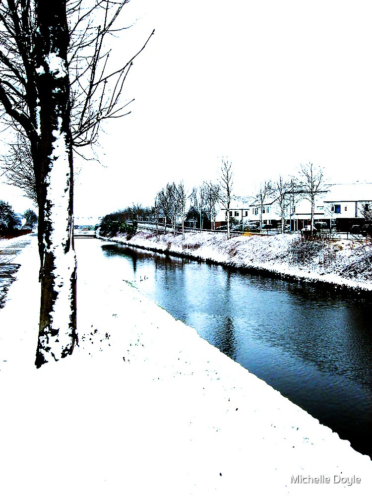 First snow fall - Hoofddorp by Michelle Doyle