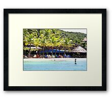 Painted Paradise Framed Print