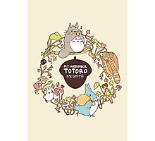 My Neighbour Totoro Photographic Print
