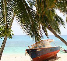 Fijian Fishing Boat by MagnusAgren