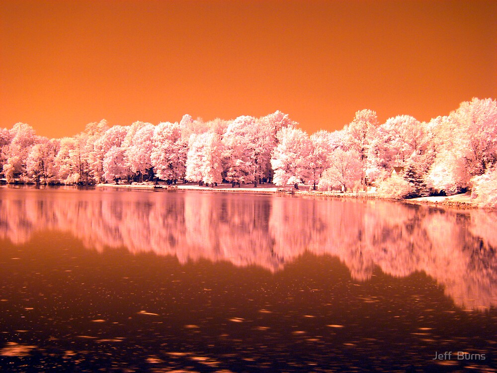 Reflection by Jeff  Burns