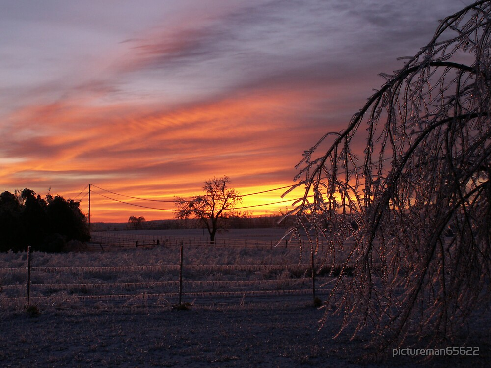 ice storm 2007 7 by pictureman65622