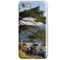West Coast Living iPhone Case/Skin
