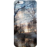 'The Dizziness of Freedom' from 'Kaleidoscope' series iPhone Case/Skin