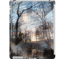 'The Dizziness of Freedom' from 'Kaleidoscope' series iPad Case/Skin