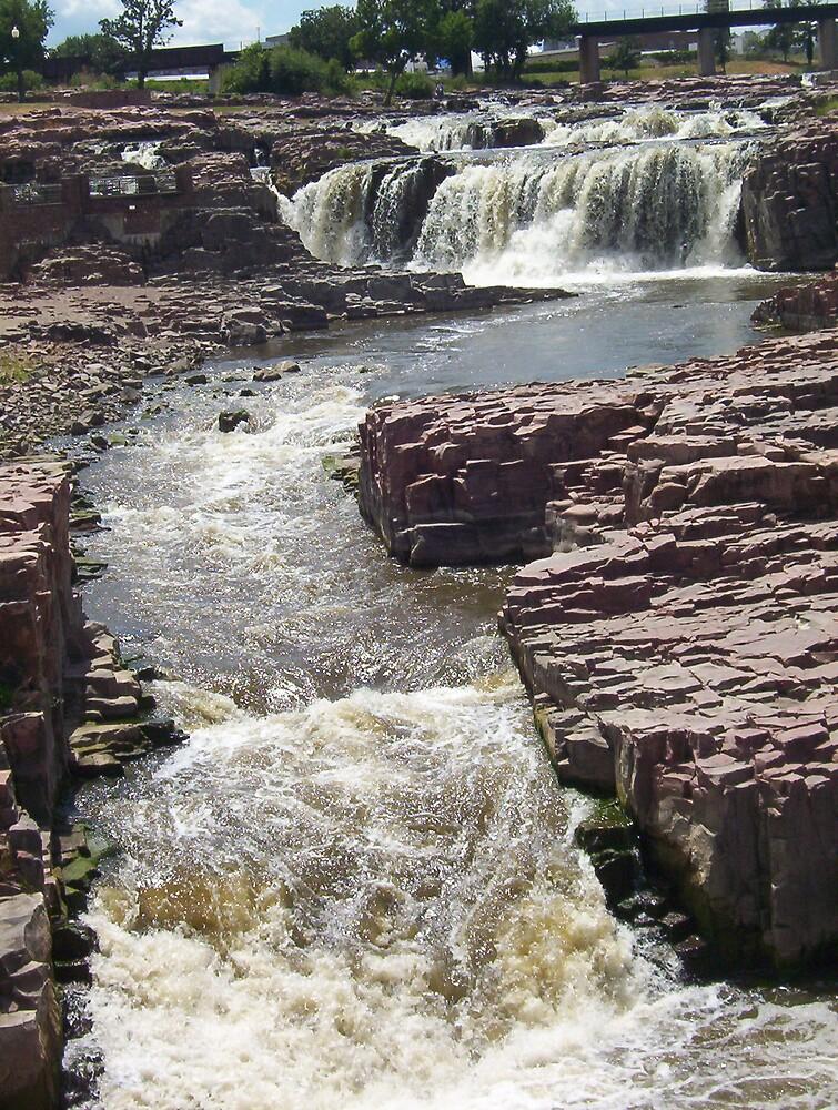 Falls Park Waterfalls Scene 1 by David Robinson