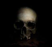 The skull by JBlaminsky