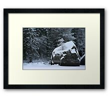 Rocks and shrubs Framed Print