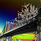 Bridge to Brooklyn. by liqwidrok