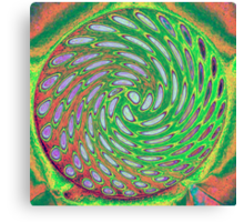 #66 Colour wheel Canvas Print