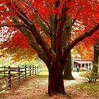 #68  Homestead In Autumn by MyInnereyeMike