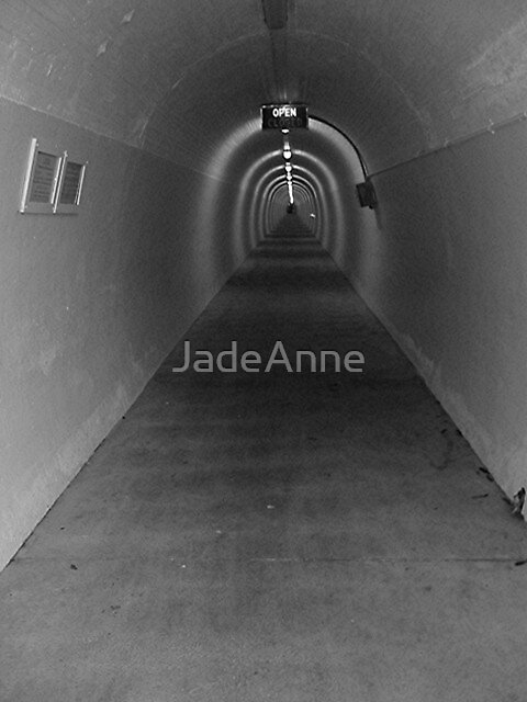 Durie Hill Tunnel #2 by JadeAnne