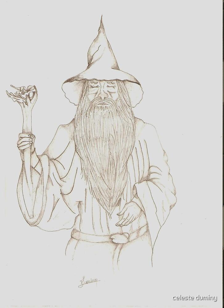 Gandulf by celeste duminy