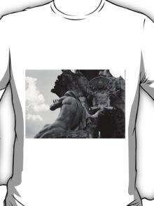 the Fountain of the Four Rivers in Rome T-Shirt