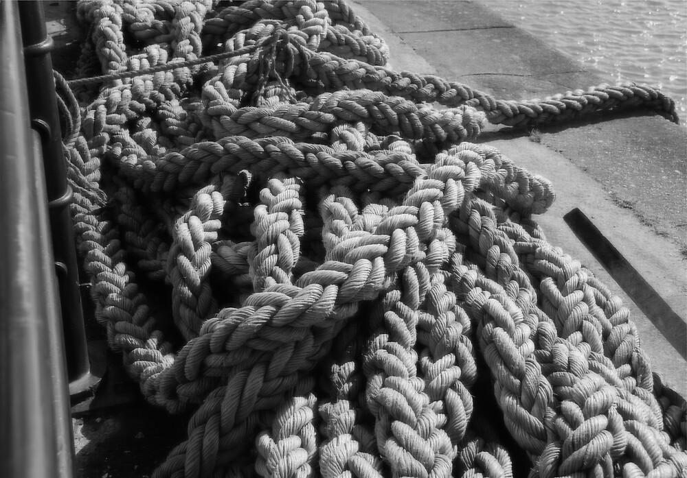 Rope by Maddie
