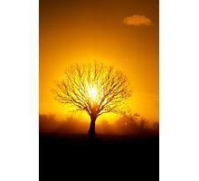 Sun Rise Photographic Print