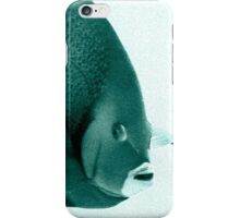 Grey Angelfish - Grand Cayman iPhone Case/Skin