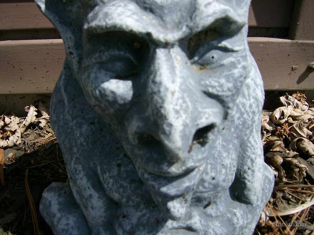 Gargoyle Face by steelwidow