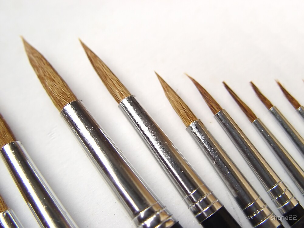 Brushes by shane22