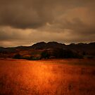 WE WALKED IN THE FIELDS OF FIRE by leonie7