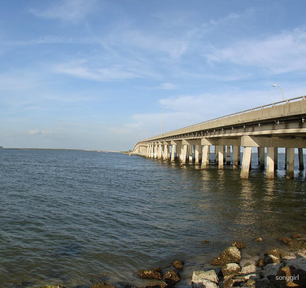 bridge by sonygirl