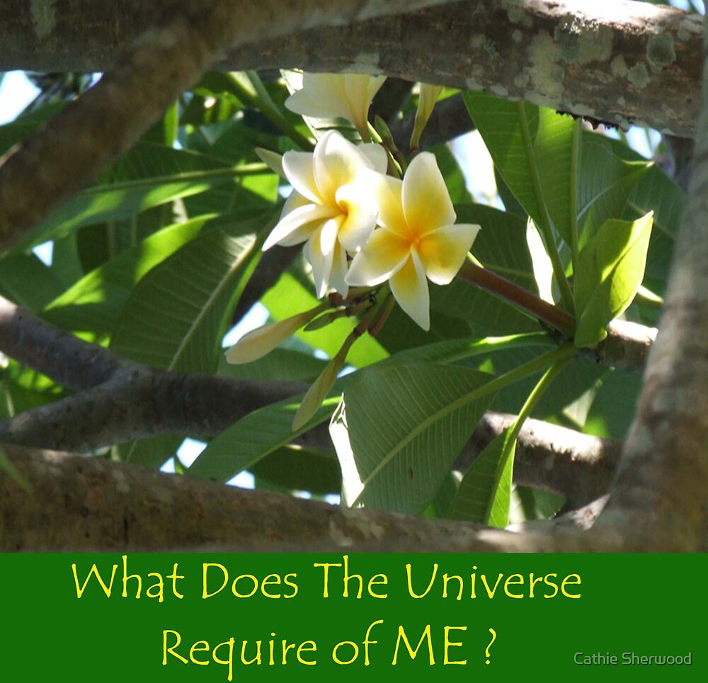 """Frangipani Peeking with caption """"What Does the Universe Require of Me?"""" by Cathie Sherwood"""