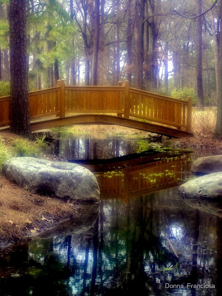 Serenity by Donna  Franciosa