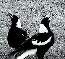 MR. AND MRS.MAGPIE. by Eric Kyle