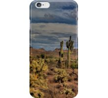 Arizona Desert Landscape iPhone Case/Skin