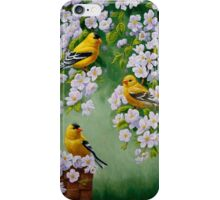 Goldfinches and Blossoms iPhone Case/Skin