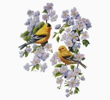 Goldfinches and Blossoms Kids Clothes