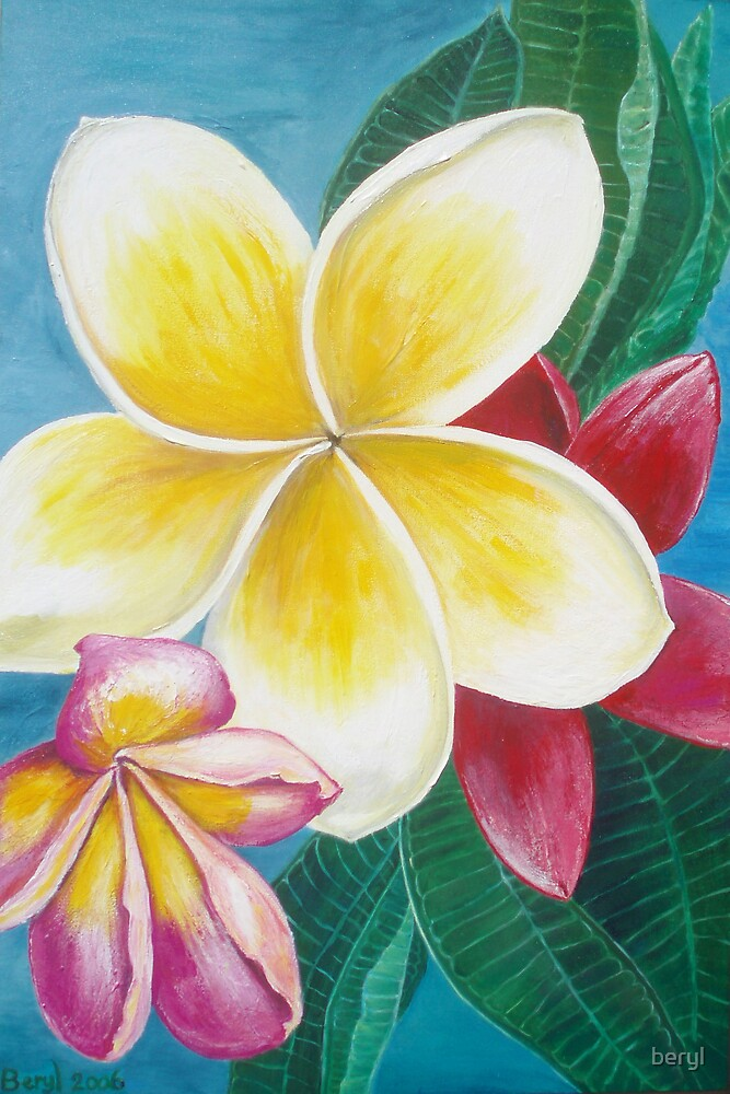 Frangipani  by Beryl Withnell