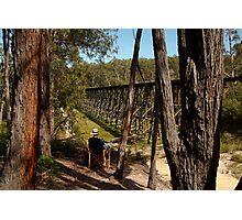 Trestle Bridge Colquhoun State Forest Photographic Print