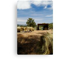 Farm Yard Canvas Print