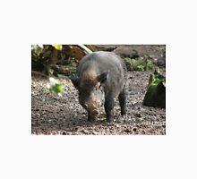 Wild Boar pig at Escot estate. Unisex T-Shirt
