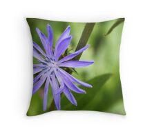 Single Purple Chicory Flower Throw Pillow